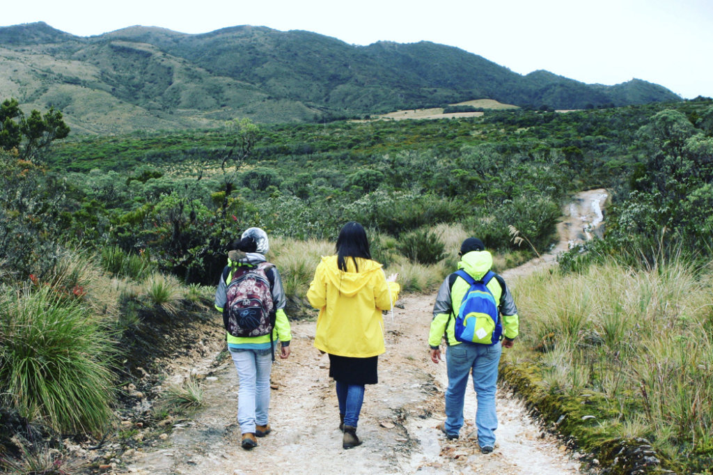 Empower 100 disadvantaged women in rural Colombia