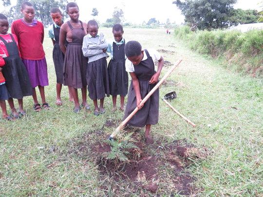 Girls working on their Secret Gardens