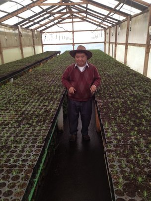 Don Augustin with his seedlings