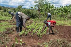 Photo from Child Rescue Kenya