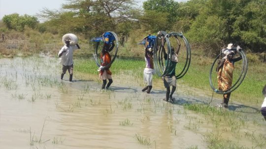 Carrying hoses and pumps.