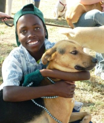 Survival of Animal Welfare Charity in Zimbabwe