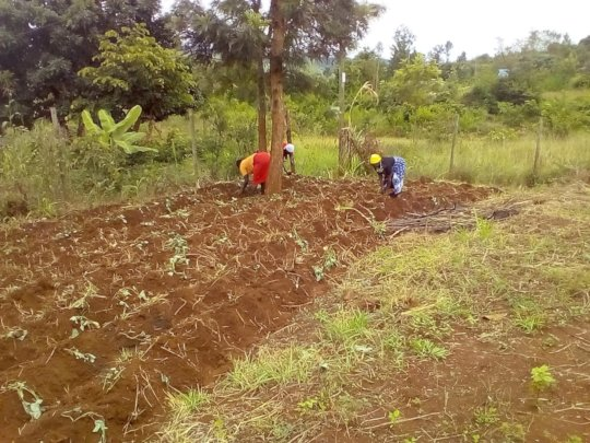 Parents preparing the land for vegetables