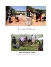 Permagardening in Kgatleng (PDF)