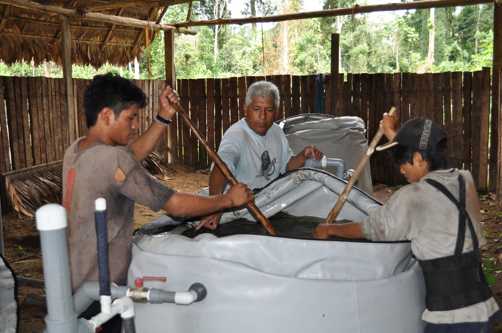 Clean Water and Sanitation -Rainforest of Peru