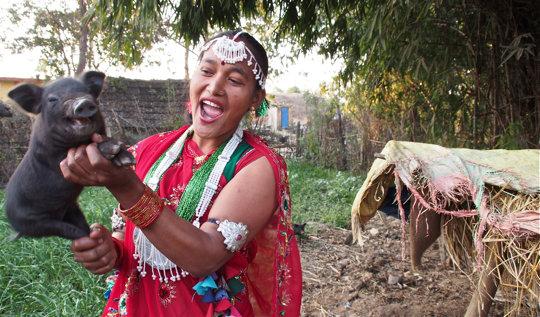 Sita runs a successful pig farm