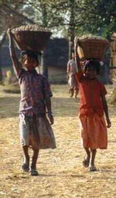 Children laboring in the fields