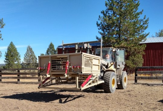 Chute for safe hoof trimming and medical attention