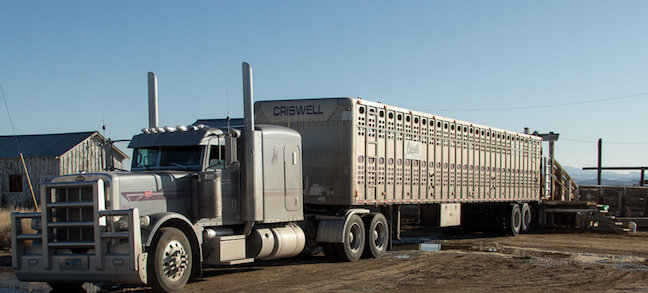 Transport the Gila Herd to California