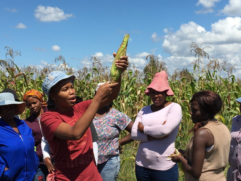 Provide tools to rural women startup farmers in SA