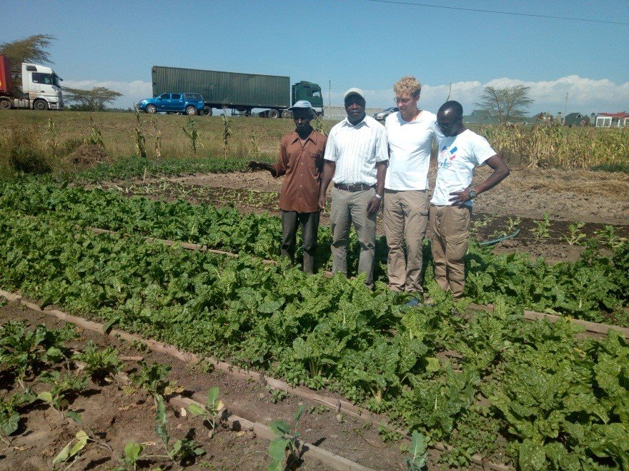 Crops grown from seeds donated by SSNK