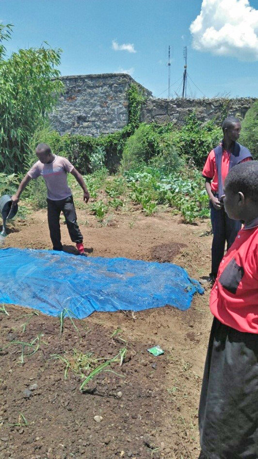 Gilgil Disabled School students water the garden