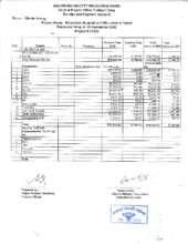 Financial_report_summary_sheet.pdf (PDF)