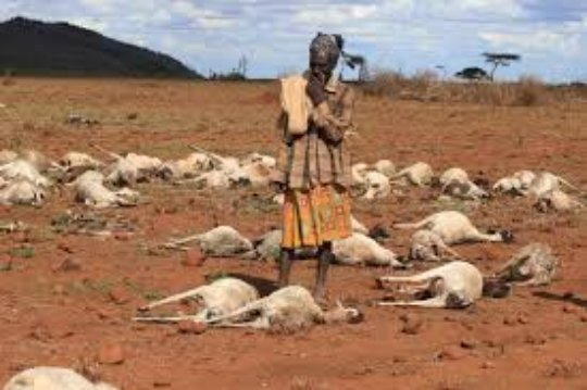 The Drought in Marsabit