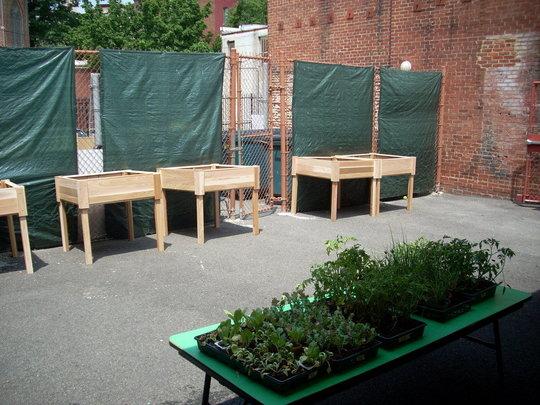 School Yard Space