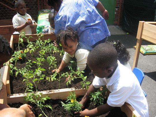 Kids Planting!