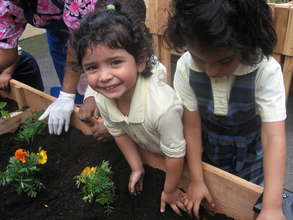 chidlren from our pre-school planting