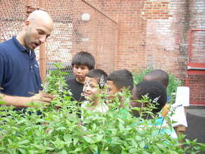 teaching the children about mint!