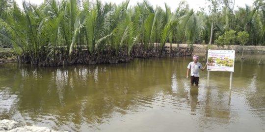 Integrated mangrove aquaculture farm