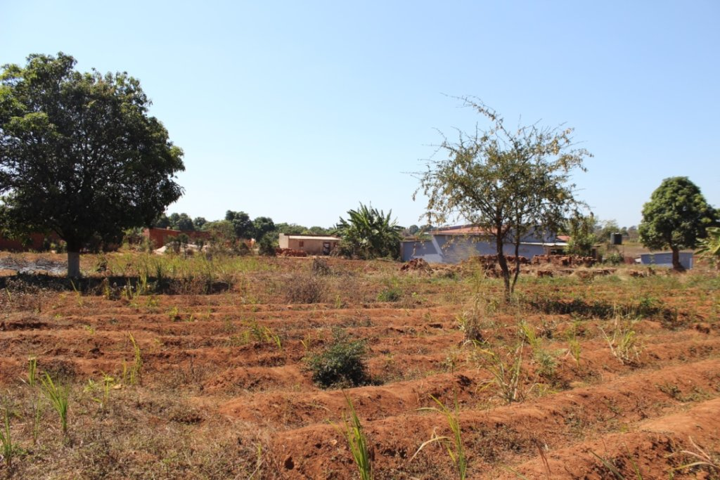 The land at Maison Kimbilio before work began