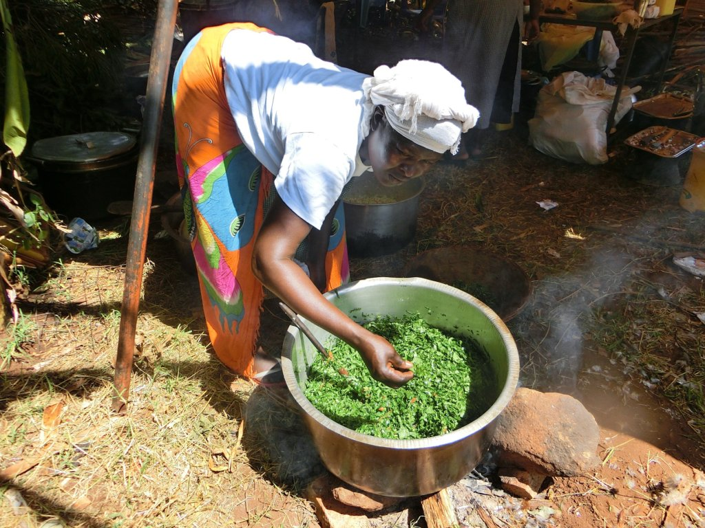 Providing Access to Water for 250 Kenyan Families