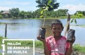 Restoring Ayapel swamp planting together