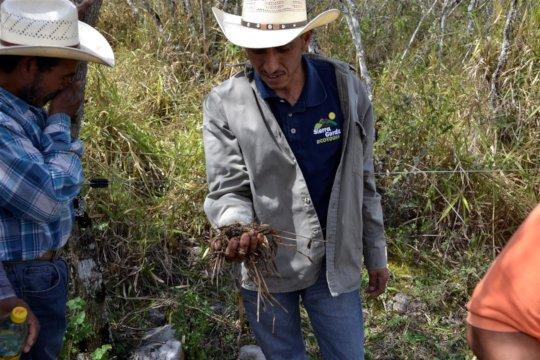 Lucio analyzes soil health, visit to pilot ranch