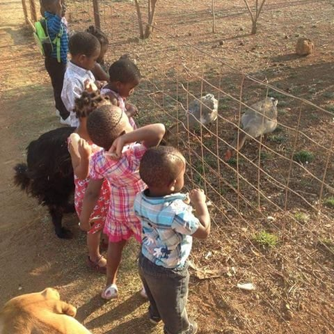Give Quality Care to 32 Children in South Africa