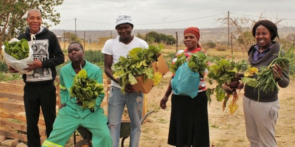 Farmers of the Future: Empowering Unemployed Youth