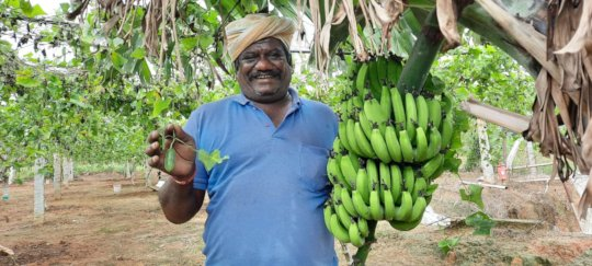 A vibrant and healthy Manjunath with his harvest