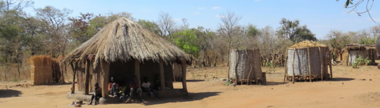 A home in a village with latrine (l) and silos (r)