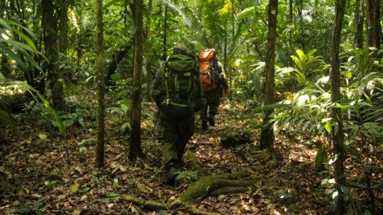 Rangers patrolling western Bladen Nature Reserve