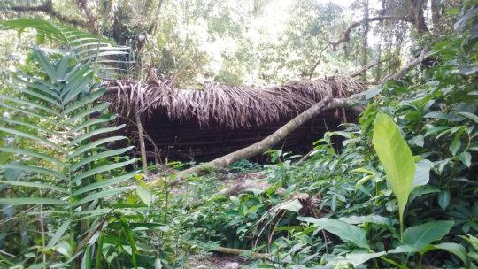 Camp found in western Bladen Nature Reserve