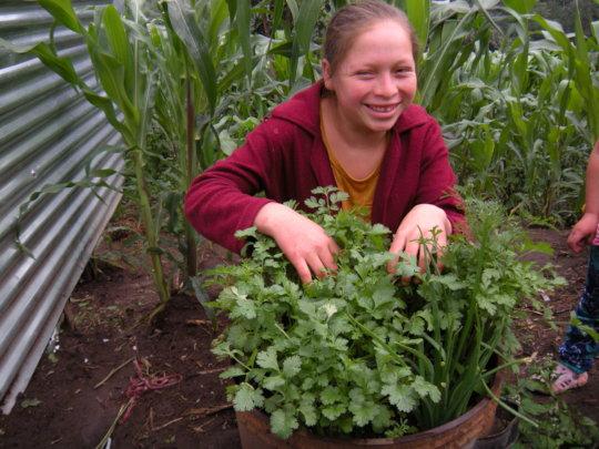 Carmen planting her bucket garden.