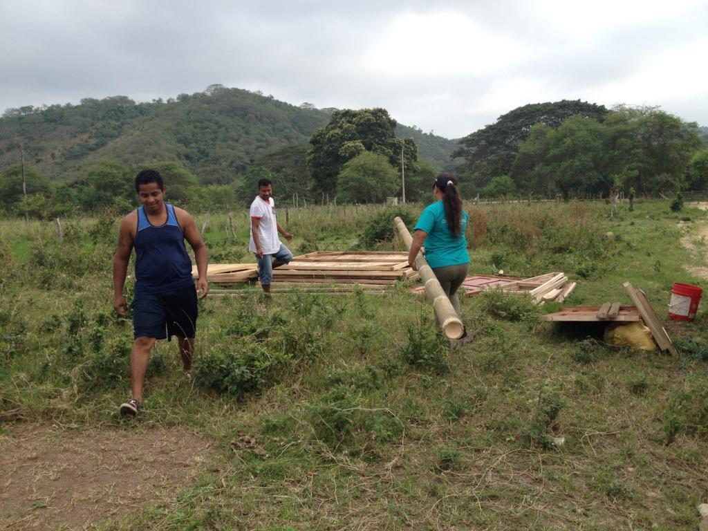 Prepping the land for construction