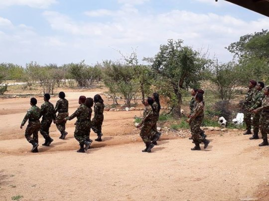 Mambas on parade with food to share.