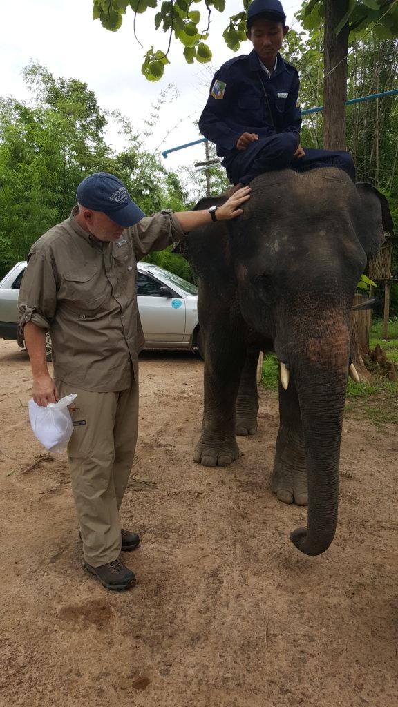Help 3,000 Elephants/10,000 Villagers in Myanmar