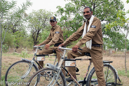 Tigers4Ever Poaching Patrollers get on their bikes