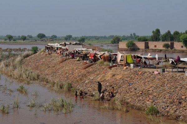 Emergency appeal flood affected children in Pak