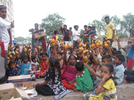Mangoes Distribution