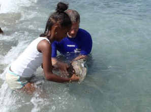 Girl helping Ard release a rescued turtle