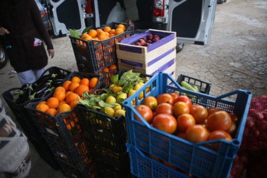 Delicious fruit and veg distribution