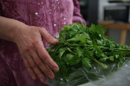 Fresh parsley for hot food for new refugees