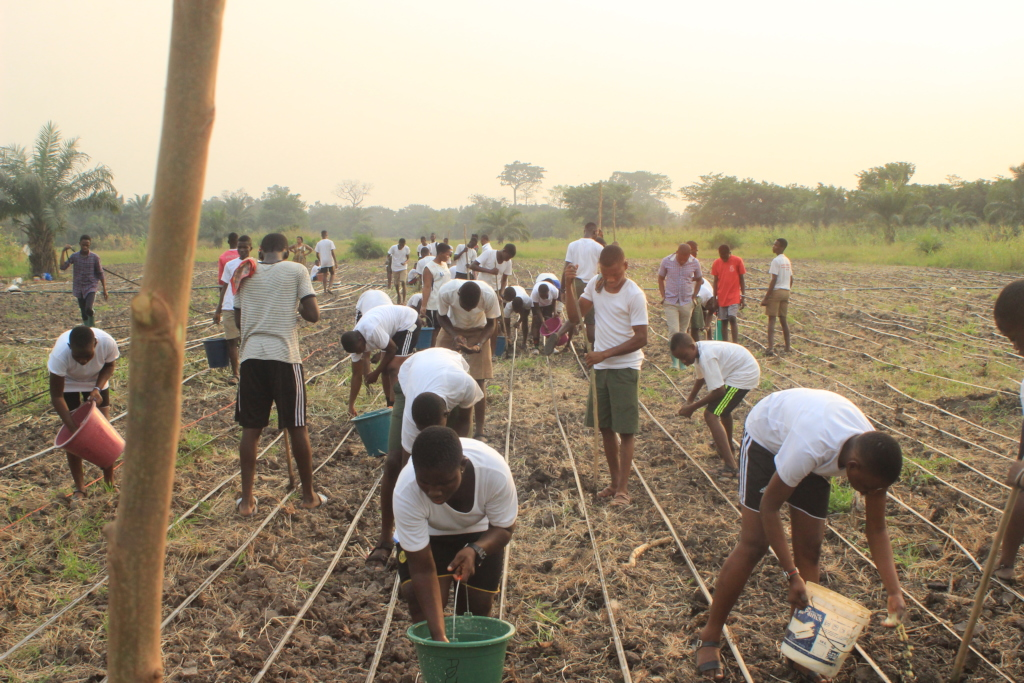 Volunteer Students helping on the farm.