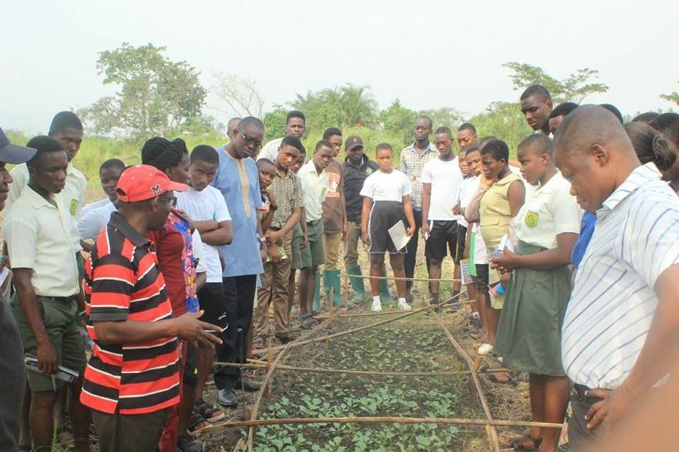 Students volunteering on the farm