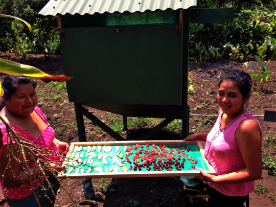 Marisela and Ruth with ready to dry some fruit