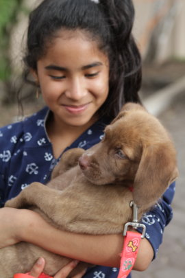 A young girl with her puppy, Santa Cruz.