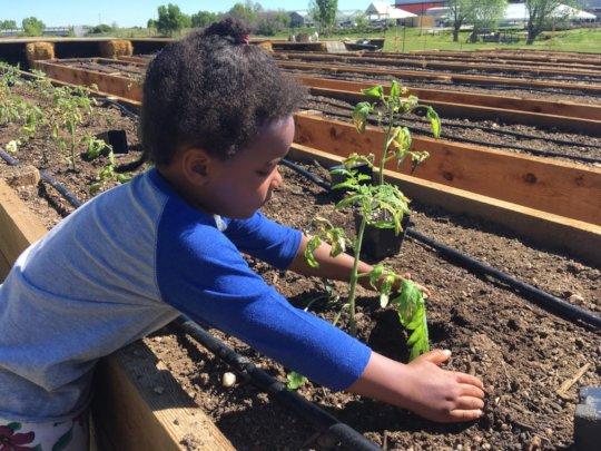 Intergenerational Farming