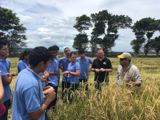Students during company visit Tio Pelon Rice field