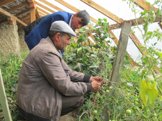 Teaching greenouse keeping to children in village
